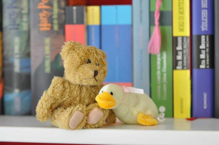 Stuffed animals in a bookcase
