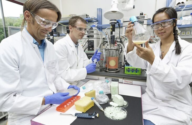 People in a lab