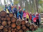 A group of children and their supervisor on a heap of tree trunks
