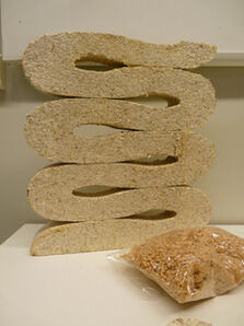 Snake-like figure made out of mycelium